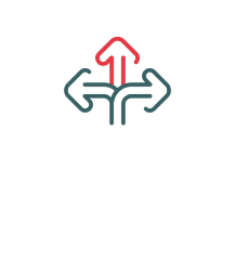 Flexible Options & Formats